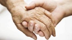 Alzheimer, encontrada probable causa de la enfermedad.