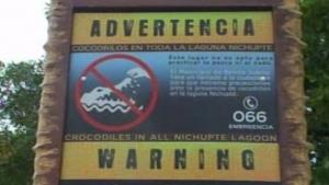aviso-cocodrilos-619x348