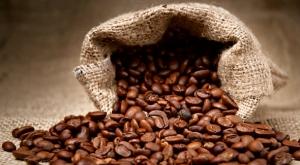 café_OK