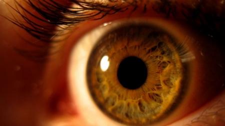 Las moscas flotantes que creemos ver delante del ojo.
