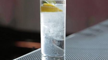"""""""Anty Gin"""": la bebida hecha a base de hormigas."""