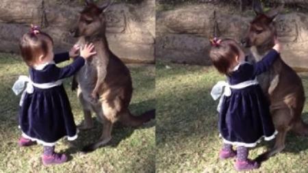 ¡Niña abraza tiernamente a un canguro bebé!
