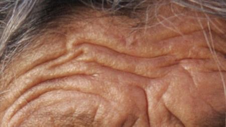 Científicos descubren nueva clave genética del envejecimiento.