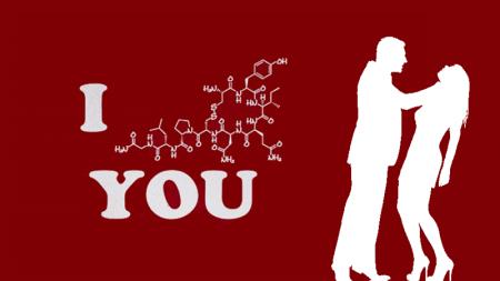Tu cerebro es similar cuando estás borracho y cuando estás enamorado.