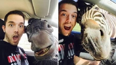 ¡Selfie con una cebra!