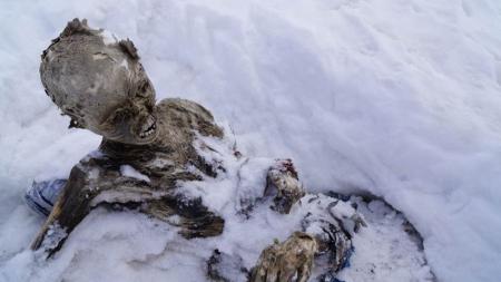 Encuentran otro cuerpo momificado en Pico de Orizaba.