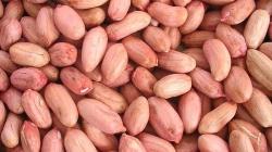 ¿Es más sano comer el cacahuate con su piel roja?